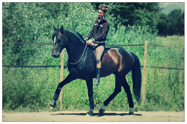 Alizee Froment riding bridle-less