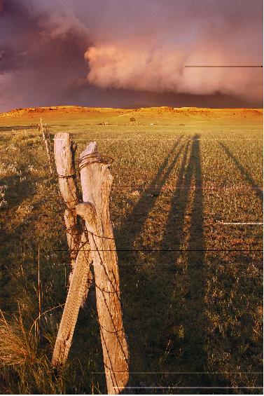 Hannah's storm