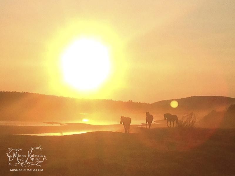 minna_kulmala_island_of_horses (9 of 15)-Cr